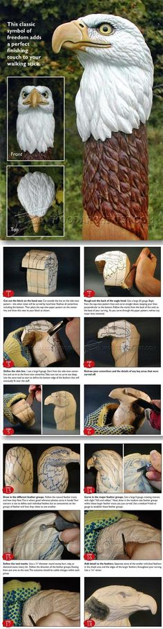 Carving Eagle Bust - Wood Carving Patterns and Techniques | WoodArchivist.com