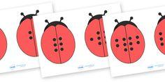 Ladybird Doubles - Ladybirds, doubling, doubles, double