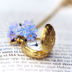 timeless beauty ~ forget me not  /