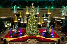 Bellagio Conservatory and Botanical Gardens - Las Vegas