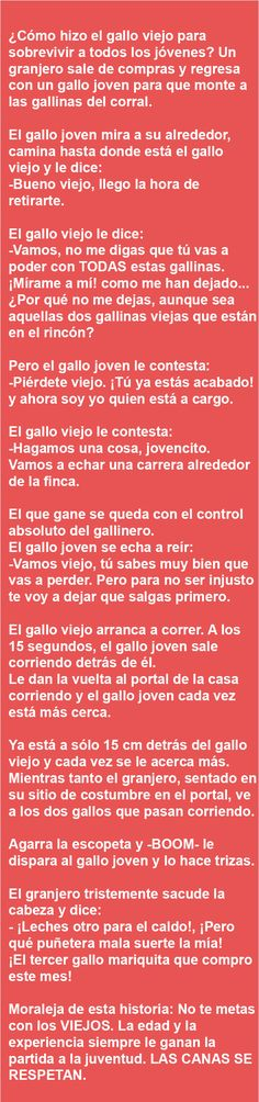 . ¿ Cómo hizo el gallo viejo para sobrevivir… . .x.r. Wise Quotes, Funny Quotes, Funny Memes, Pepito Jokes, Spanish Jokes, Smiles And Laughs, Picture Quotes, Favorite Quotes, Traveling By Yourself