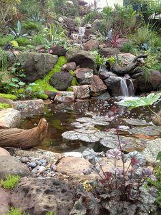 La Lagunita Created By Steve Sandalis Of Mystic Water Gardens And John  Lauterbach Of Lauterbach, Inc. From The 2012 Pasadena Showcase House Of  Design