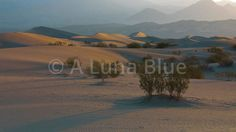 Dunes 1001 HD, 4K Stock Footage http://www.alunablue.com/-/galleries/stock-footage/landscapes/-/medias/b0fe48ed-a8de-4714-9d2f-9faba88e84fa-dunes-1001-hd-4k-stock-footage