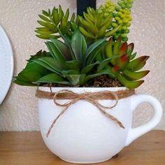 Faça a sua xícara com suculentas para sua casa…