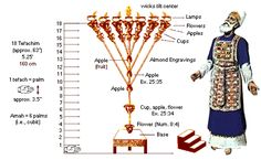 A Closer Look at the Menorah. During Christian Retreats Feast of Tabernacles they light the Menorah. 7 Branch Menorah, Israel, Feast Of Tabernacles, The Tabernacle, Prophetic Art, Divine Light, Torah, Judaism, Christianity