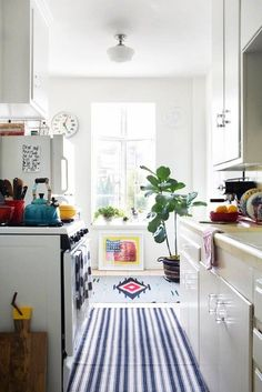 Small kitchen with a runner rug, and a large indoor plant