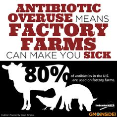 Many people don't realize that a whopping 80 percent of antibiotics in the U.S. are used in agriculture, mostly in ways that speed up the development of resistance, meaning these vital drugs may not work when people need them most. More here: http://gmoinside.org/antibiotic-overuse-means-factory-farms-can-make-sick Food & Water Watch #GMOs #CAFOs #Antibiotics #food
