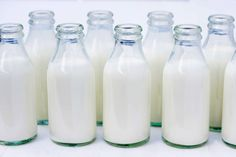 Dairy companies to invest more on infrastructure