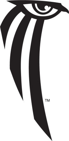 ultimate collection of eagle logo designs 30 best eagle