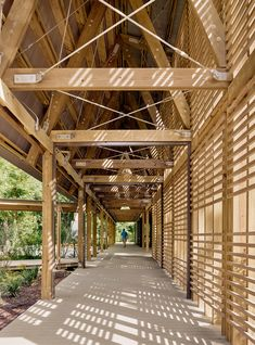 Pine pavilions form Marine Education Center in Mississippi by Lake Flato Architects Architecture Design Concept, Detail Architecture, Plans Architecture, Bamboo Architecture, Kindergarten Architecture, Lake Flato, Timber Screens, Wooden Facade, Houses