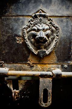 Lion Iron