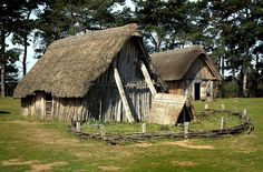 West Stow Anglo-Saxon Village 1/6    The oldest house, built on the site of the original building, with the Hall in the background. All the buildings are experimental reconstructions built to test different interpretations of the archaeological evidence.