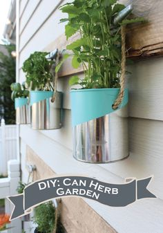Herb Garden Ideas (A Guide on How to Grow Herbs & 10 Easiest Herbs to Grow - Anbau Hanging Herb Gardens, Hanging Herbs, Easy Herbs To Grow, Growing Herbs, Growing Flowers, Backyard Landscaping, Landscaping Ideas, Backyard Ideas, Big Backyard