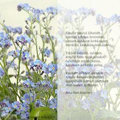 Runot - Marlan kuvat Finnish Words, Glass Vase, Plants, Friends, Amigos, Plant, Boyfriends, Planets
