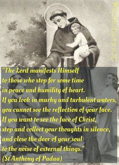 "St Anthony of Padua (or of Lisboa/Lisbon) - apropos the readings today: I Kings 19:8-16 - the ""still, small voice"" passage - see, I always knew St. Anthony was really a Carmelite at heart"