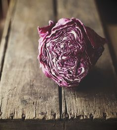 "cabbage Photo by Hannah Queen of ""Honey and Jam"""