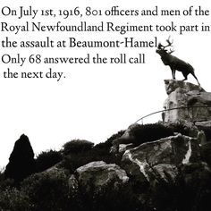 July 1 Newfoundland Regiment Newfoundland Canada, Newfoundland And Labrador, Beaumont Hamel, Canadian Things, Remembrance Day, World Photo, Beautiful Places In The World, Good Ole, Beautiful Islands