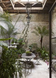 Winter Garden design by Rose Uniacke Indoor Garden, Outdoor Gardens, Home And Garden, Atrium Garden, Atrium House, Garden Gate, Indoor Plants, Outdoor Rooms, Outdoor Living