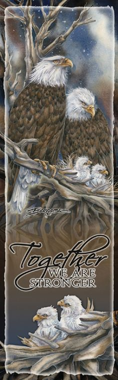 """Eagles (Bald) / Safety from the Storm"" par Jody Bergsma"