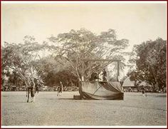 Het schavot met de galg waaraan een op 31 maart 1903 in Tjiandjoer ter dood veroordeelde moordenaar wordt opgehangen.