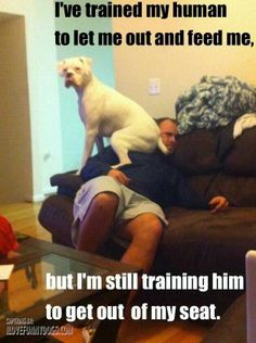 Badly trained...
