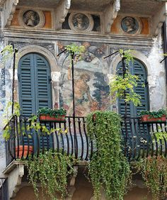 Balconies of Verona., province of verona , Veneto region Italy Windows And Doors, Green Windows, Arched Doors, Italy Travel, Italy Vacation, Architecture Details, The Good Place, Bali, Places To Go