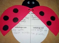 Ladybug Craft Report Guide & Template can replicate for any animal/bug Preschool Crafts, Preschool Activities, Crafts For Kids, Ladybird Ladybird, What The Ladybird Heard Activities, Eyfs Classroom, Ladybug Crafts, Kindergarten Language Arts, Dessert