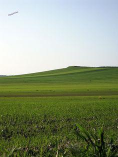 puglia murgia barese natura prato verde di primavera