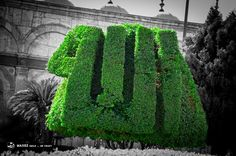 Allah calligraphy in plant leaves at the Saladin Citadel of Cairo
