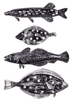 http://4.bp.blogspot.com/-CTHRwXwav38/UOQrQ8ksjOI/AAAAAAAADd8/5G2t_wX9V1Y/s1600/fish.jpg
