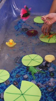 Sensory Table...instead of fish rock use colored rice or sand.