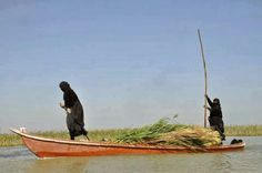 Marsh arab southern of iraq