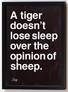Tigers never loose sleep Over the opinions of sleep