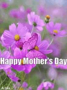 Sister Friends, Mom And Sister, Happy Mother's Day Gif, Mothers Day Gif, Daughter, My Daughter, Daughters
