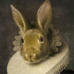 Rachel Conver's •• 'Rabbit in Costume' The lace in this painting is so real looking.....It took time to replicate.