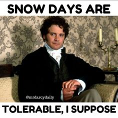 "5 Likes, 2 Comments - Mr Darcy Daily (@mrdarcydaily) on Instagram: ""Preparing for 22 inches of snow tomorrow ... anyone else planning to hang out with Mr. Darcy for…"""