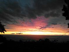 Only in Hawaii the Big Island Kona♥   Photo by: Francine Weller