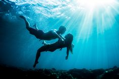 Photo by Sarah Lee #underwater #photography