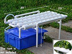 I built three homemade hydroponics systems over two years, each time making improvements. This last system produced phenomenal results!