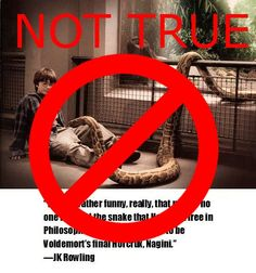 The snake behind the glass was a male nonpoisonous boa constrictor. Nagini is a female poisonous python. Seriously people, sources.