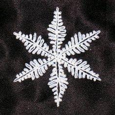 Ravelry: Snowflake pattern 3 pattern by Australian Women's Weekly