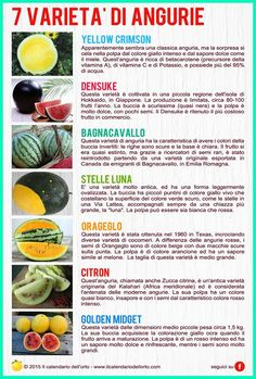 Il Calendario dell'Orto Healthy Drinks, Food Hacks, Gardening Tips, Sprouts, Cantaloupe, Watermelon, Veggies, Nutrition, Vegan