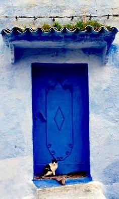blue door with cat - Chefchaouen, Morocco door - Morocco Travel Inspiration Cool Doors, Unique Doors, Knobs And Knockers, Door Knobs, Entrance Doors, Doorway, Stil Inspiration, Travel Inspiration, When One Door Closes