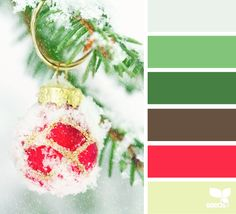 Design Seeds celebrate colors found in nature and the aesthetic of purposeful living. Colour Pallette, Color Palate, Colour Schemes, Color Patterns, Color Combos, Design Seeds, World Of Color, Color Of Life, Christmas Colors