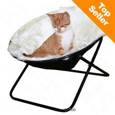 Cat Bed Seat Window Sunny Perch Sleeping Cosy Foldable Indoor Outdoor Catnap for sale online Niche Chat, Bed Images, Wayfair Living Room Chairs, Nursery Bedding Sets, Beds For Sale, Cat Supplies, Butterfly Chair, Cat Furniture, Chairs For Sale