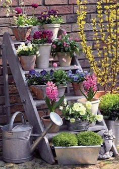 Planted Pots ~ Cottage Fence - a great way to display pots with seasonal annuals and other decor such as pumpkins, branches, miniature christmas trees, pots of rosemary or other herbs