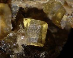 Cyrilovite,  NaFe+++3(PO4)2(OH)4•2(H2O), Hagendorf-South, Oberpfalz, Bavaria, Germany. Fov 3 mm. Photo berthold