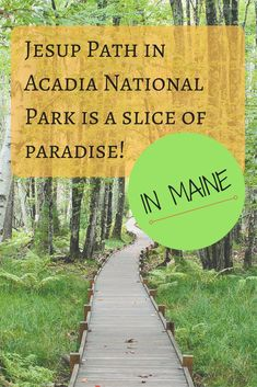 Some People Call This Forest In Maine A Little Slice Of Paradise : Jesup Trail is a hidden gem in the forest of Acadia! Maine Road Trip, East Coast Road Trip, Road Trips, Field Trips, Maine New England, New England Travel, Places To Travel, Travel Destinations, Places To Go