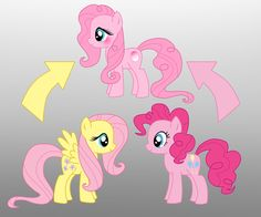 Pony Fusion: Fluttershy And Pinkie Pie by Willemijn1991 on DeviantArt