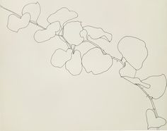 Ellsworth Kelly, Briar, 1961, ink on paper, 22 1/2 x 28 1/2 in. Wadsworth Atheneum Museum of Art, Hartford, Conn. © Ellsworth Kelly. Photograph Courtesy: The Metropolitan Museum of Art.